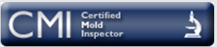 certified Basement ceiling black mold removal testing services performed in 18924 bathroom