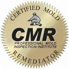 Montgomery County crawl space ceiling black mold remediation and testing being performed inside 18924 home