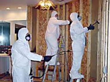 basement bathroom mold remediation and inspection services being carried out in 18924 Montgomery County