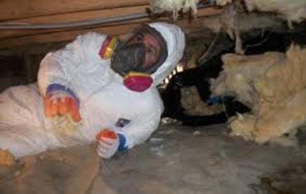 residential home certified crawl space basement remediation black mold removal Franconia Pennsylvania